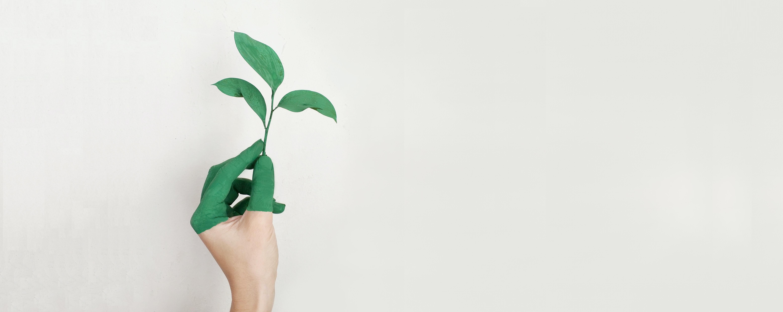 Get Green Hand mit Pflanze