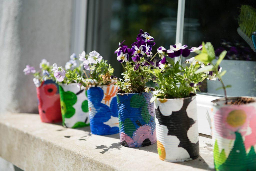 Pflanzen in DIY Blumentöpfe aus Dosen
