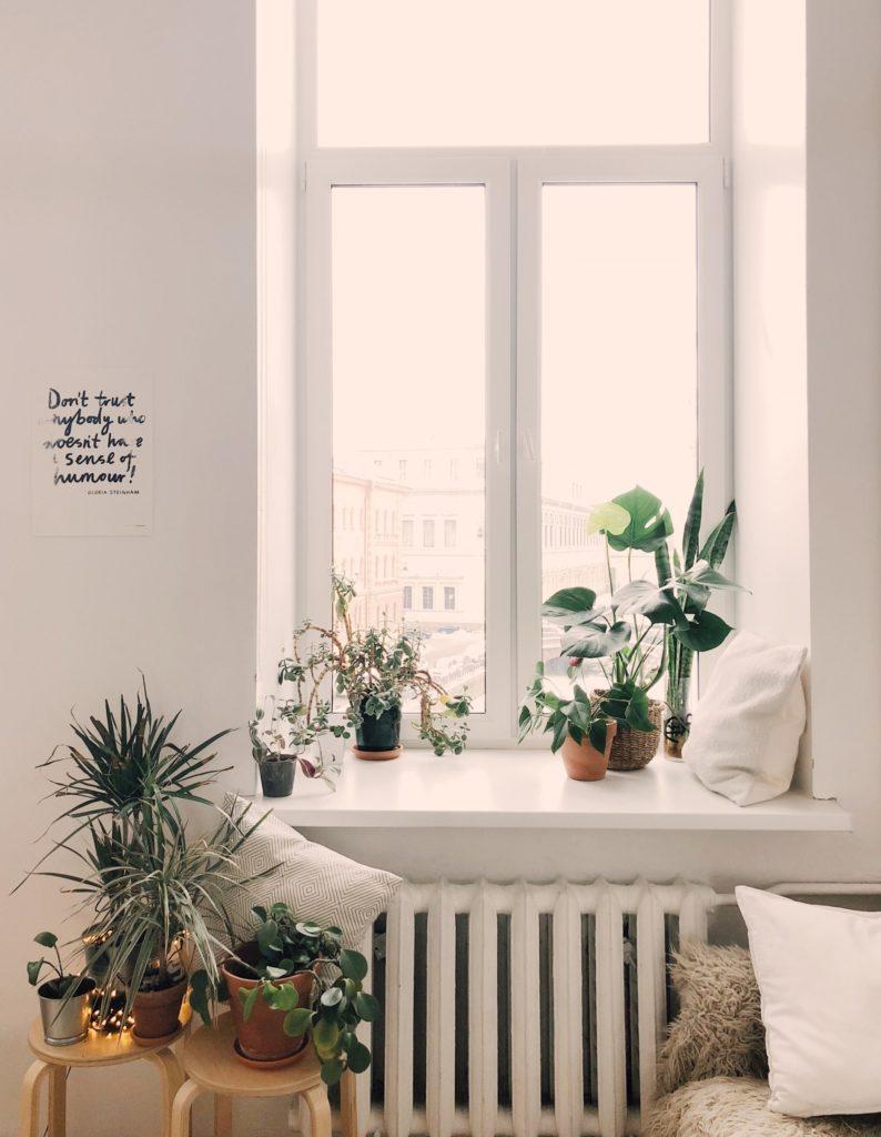 Ökologisch Wohnen mit Pflanzen
