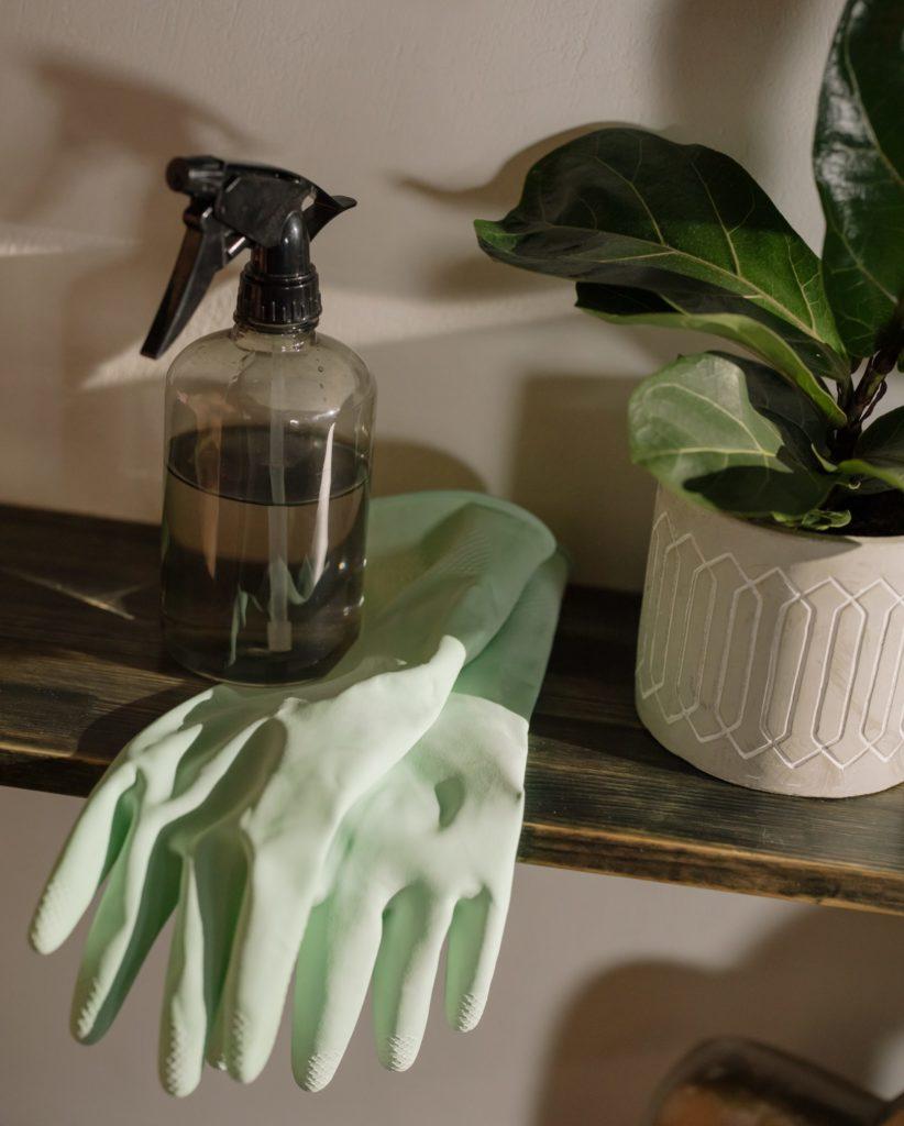 Ökologisch putzen, Spülhandschuhe, Seife grün